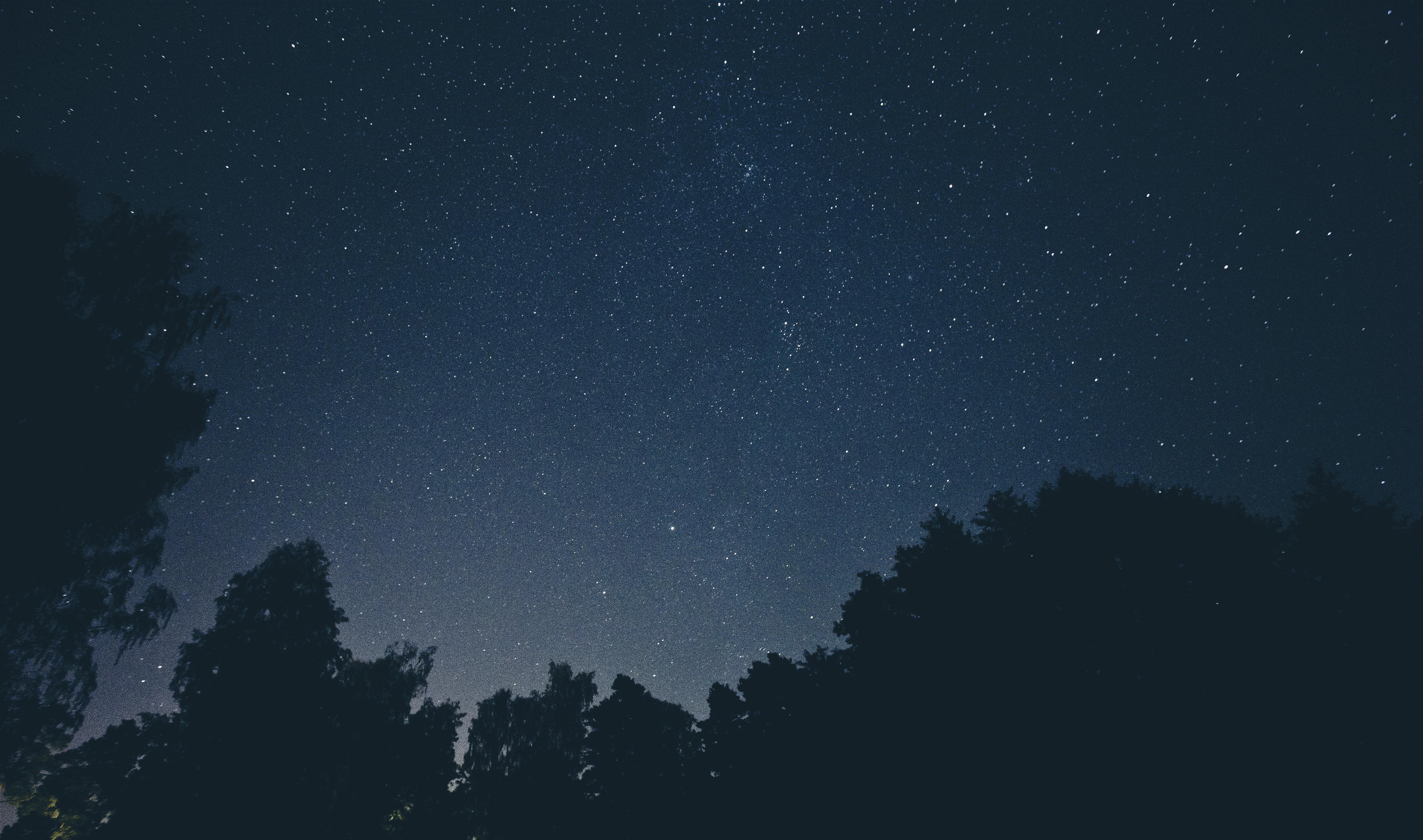 Hingehört – Nachtmusik