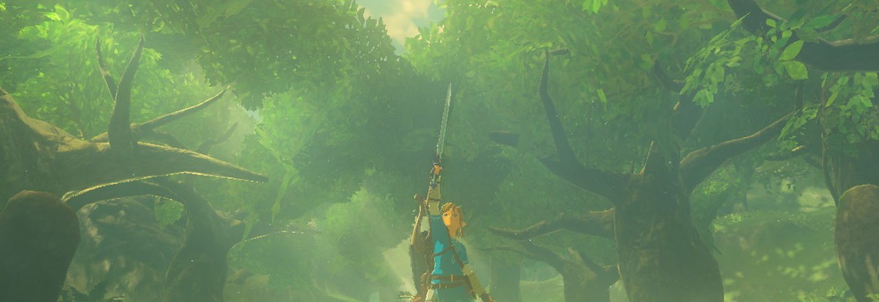 The Legend of Zelda – Breath of the Wild – I'm here to serve