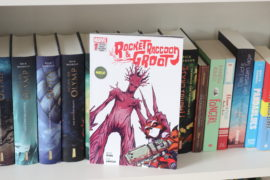 Rocket Raccoon und Groot